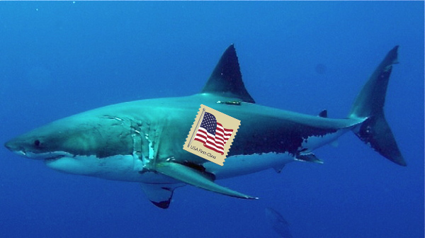 shark with stamp