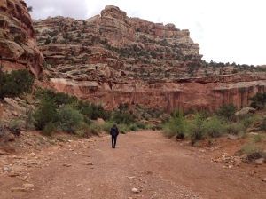 A quiet walk among the the red rocks in Capitol Reef National Park