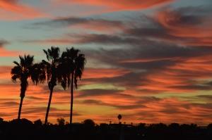 Daylight savings sunrise