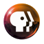 logo-pbs2