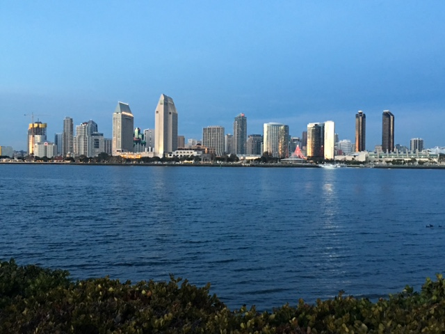 The view of downtown across San Diego Bay.